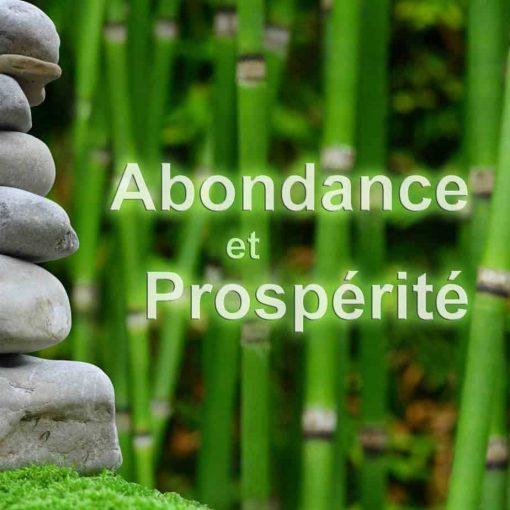 abondance et prospérité - suscité l'abondance - manifester l'abondance