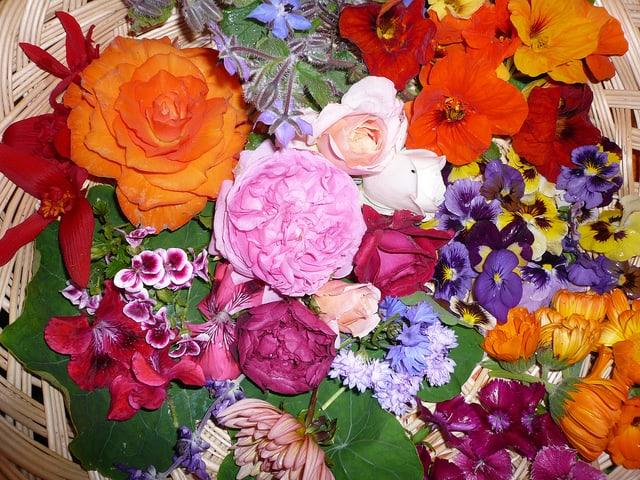 Quand les fleurs comestibles s'invitent dans nos assiettes